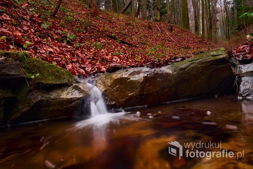 Fotografia przedstawia leśny strumyk sfotografowany z długim czasem naświetlania który umożliwił rozmycie ruchu wody.