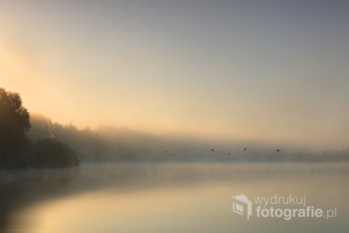 Zdjęcie powstało podczas bardzo wczesnego spaceru po okolicach Krakowa. Cholerzyn.