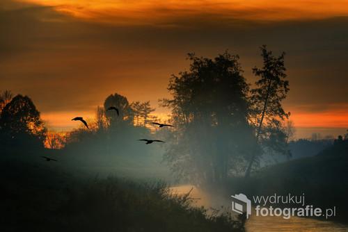 Wschód słońca, Kraków, Błonia krakowskie, rzeka Rudawa Błonia – park miejski w postaci rozległej łąki (dawniej pastwisko gminne) o powierzchni 48 ha i obwodzie ok. 3587 metrów, położony w (prawie centrum) Krakowie.