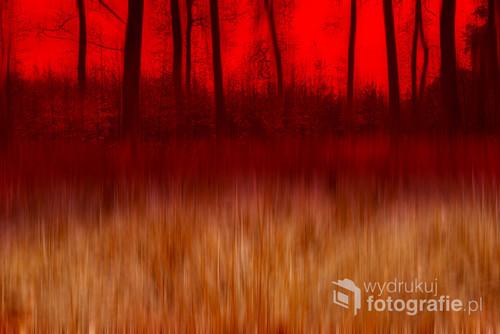 Jak nie kochać jesieni, jej barw purpurowych,  Szarych, żółtych, czerwonych, srebrnych, szczerozłotych.  Gdy białą mgłą otuli zachodzący księżyc,  Gdy koi w twoim sercu codzienne tęsknoty.