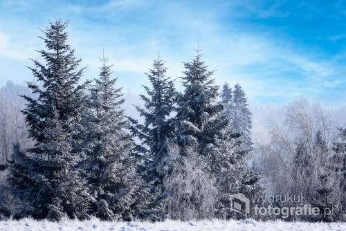 Uroki zimy... na Podhalu.