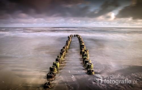 Resztki drewnianego falochronu na wybrzeżu Morza Bałtyckiego