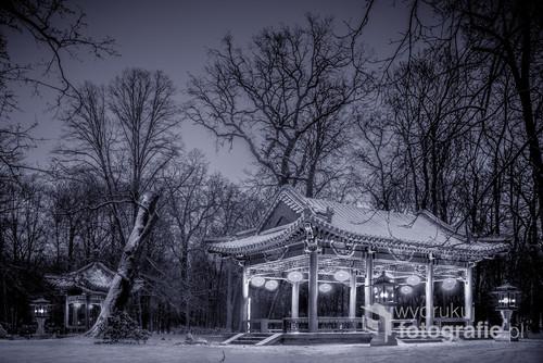Wydrukuj Fotografie Ogród Chiński W Parku łazienki