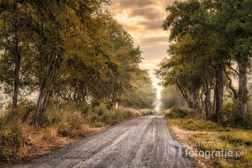 Między granicą miasta Opola na wschodzie, a linią lasu są tereny po dawnym ogromnym stawie Kalimacha. Dalej pozostałości potoków, które do nie wpływały. Do dziś w tej okolicy zawsze rankiem tworzą się mgły a w powietrzu czuje się coś tajemniczego