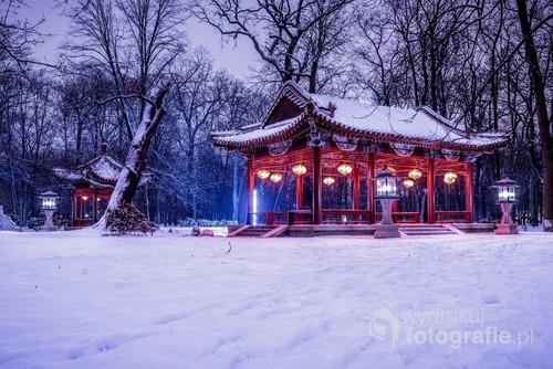 Zima w Łazienkach Królewskich, do tego nocą, bywa bardzo ciekawa