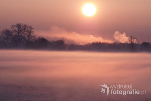Poranek nad Odrą w okolicach Opola