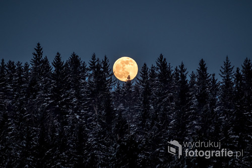 księżyc w pełni wschodzący nad górami i lasami