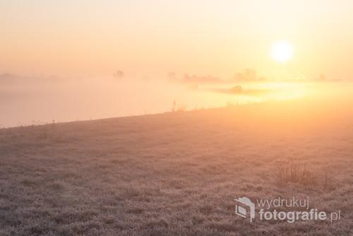 Mgły nad Kanałem Ulgi w Opolu