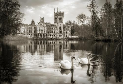 Ruiny pałacu w Kopicach. Pałac zwany pałacem na wodzie. Zdjęcie wykonane w przeddzień pierwszej wiosennej pełni księżyca 2021 r. II miejsce w XXVI edycji konkursu
