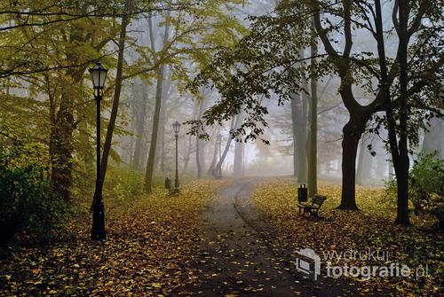 Park zamkowy. Pszczyna. Polska