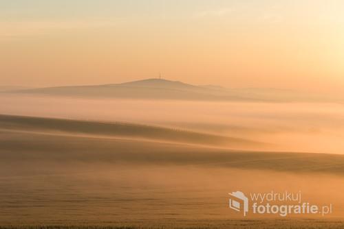 Wzgórza na Morawach wyłaniające się z mgły o wschodzie słońca. Piękno, które można podziwiać każdego dnia.