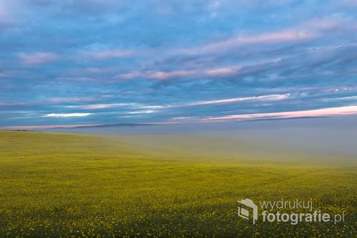 Kolorowe niebo nad polami rzepaku, a pomiędzy mgła unosząca się powoli. Natura jest najlepszym kreatorem.