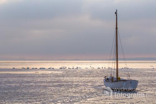 Podczas zimy mróz skuł lodem Zatokę Pucką. Na skrawku wody wygrzewają się w słońcu łabędzie. Uwięziona łódź postoi do wiosny.