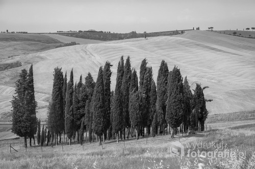 Toscania, lato 2015
