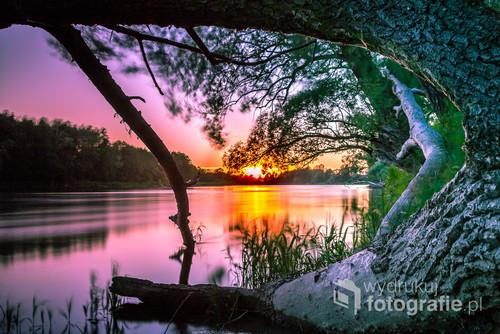 Piękny wieczór, niebo natura pomalowała niezwykle aż nienaturalnie, wspaniałe drzewo, stare, złamane i zanurzone w wodzie. Takie krajobrazy tylko nad Bugiem.