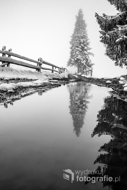 Zimowy spacer na Podhalu.