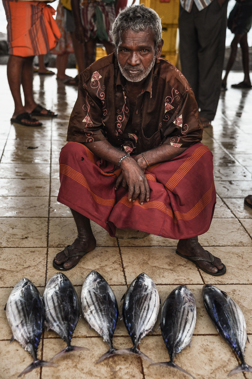 Sprzedawca ryb na targu rybnym na obrzeżach miejscowości Weligama na Sri Lance.