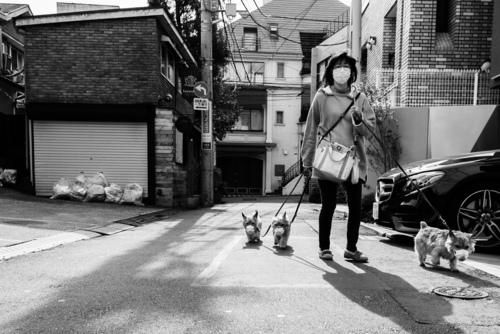 Zdjęcie wykonane w Tokio podczas pandemii Covid-19. Tokio, Japonia.