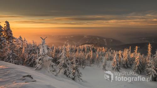 Zdjęcie wykonane w mroźny poranek na szczycie Łysej Góry w Beskidzie Śląsko-Morawskim, w Czechach.