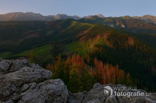 Fotografia wykonana w lipcowy poranek o wschodzie słońca. Gwiazda, wschodząca tego ranka na czerwono pomalowała świerki barwami jesieni. Widok ze szczytu góry Nosal w Tatrach, w kierunku południowym.