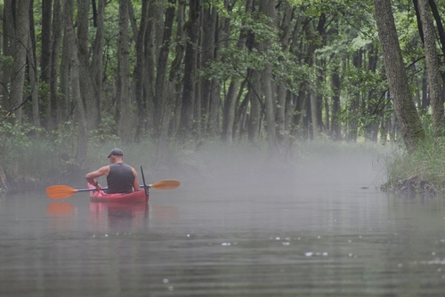 Fotografia została wykonana przez mnie podczas spływu kajakowego rzeką Dobrzycą, przedstawia kajakarza wpływającego w mgłę nad rzeką. Zdjęcie wykonane 9 lipca 2021r.