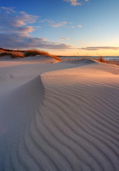 Wydmy na wybrzeżu Morza Bałtyckiego, plaża w Kołobrzegu, Polska