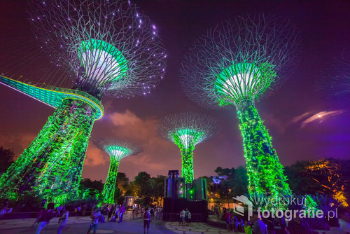 Singapurskie kolosalne konstrukcje oświetlone nocą przyciągają tłumy piknikujących ludzi, nie tylko turystów. W tle księżyc w pełni.
