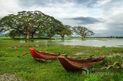 Krajobraz nad jeziorem Tissa w miejscowości Tissamahamara, Sri Lanka 2015