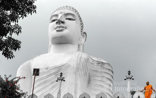 Mnich buddyjski u stóp olbrzymiego posągu Buddy w mieście Kandy, Sri Lanka 2015