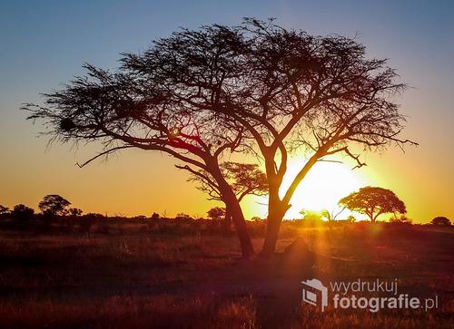 Zachód słońca nad sawanną , RPA