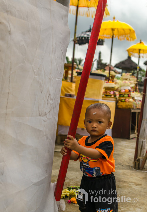 Lokalne święto balijskie. Bali, Indonezja 2016.