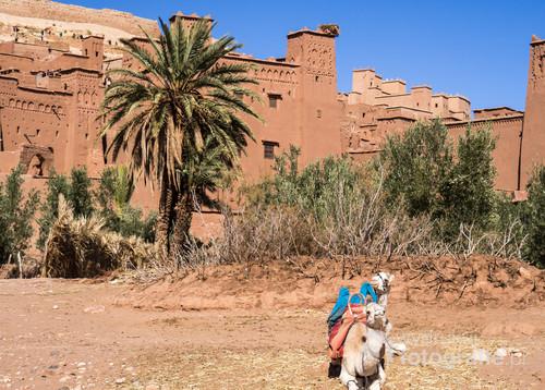 Ksar Ait Benhaddou, Maroko 2018