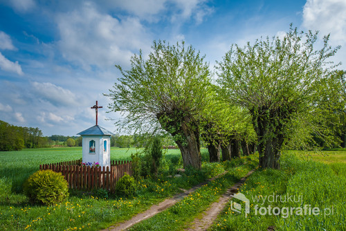 Mazowiecka wieś. Kapliczka przy polnej drodze obsadzonej wierzbami. Unikalne miejsce. Prawdziwie mazowiecki, wiejski krajobraz.