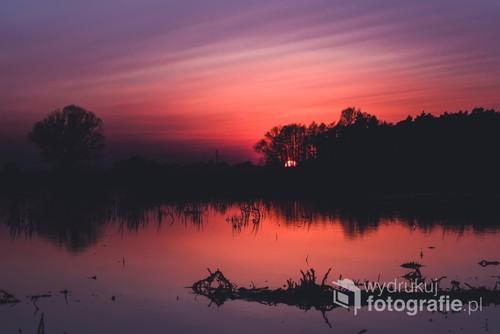 Zdjęcie zrobione o zmierzchu nad rozlewiskami rzeki Widawy. Za drzewami przebłyskują ostatnie promienie słońca.