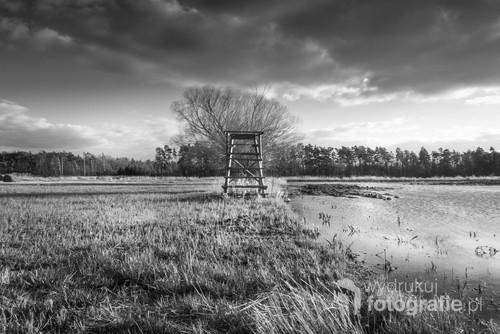 Zdjęcie zrobione na zalanej łące w dolinie rzeki Widawy. Ukazuje kontrast faktur pomiędzy trawą, wodą a niebem,