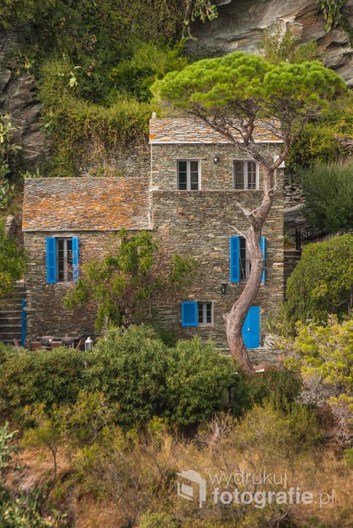 Francja, Korsyka, miasto Nonza na Cap Corse, do charakterystyczny dla tych terenów, przepiękne niebieskie okiennice przyciągnęły moją uwagę.
