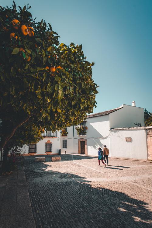 Zdjęcie zostalo zrobione podczas wycieczki do Andaluzyjskiego miasteczka Ronda- jednego z Hiszpańskich