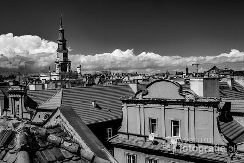 Poznań z widokiem na Poznański Ratusz. zdjęcie w czerni i bieli wykonane latem przedstawia piękny  Ratusz, który wyrasta nad dachami poznańskiej Starówki.