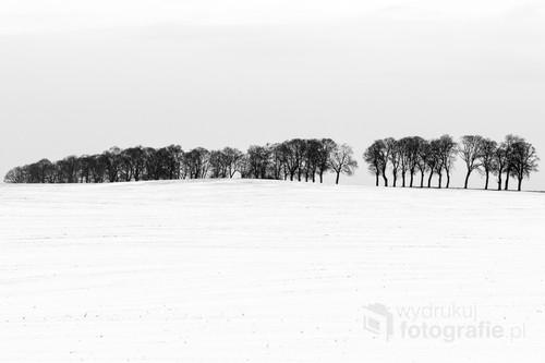 Zimowy krajobraz na polu pod Ostródą.