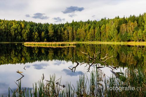 Piękne i czyste jezioro położone pośród zachodniomazurskich lasów.