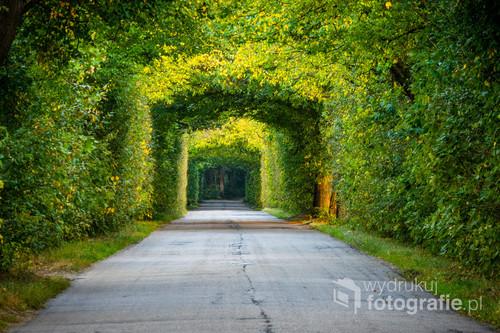 Naturalny tunel powstały nad lokalną drogą między Miłomłynem a Borecznem.
