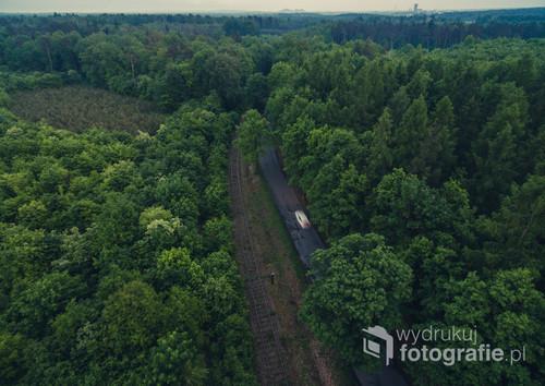 Okoliczny las