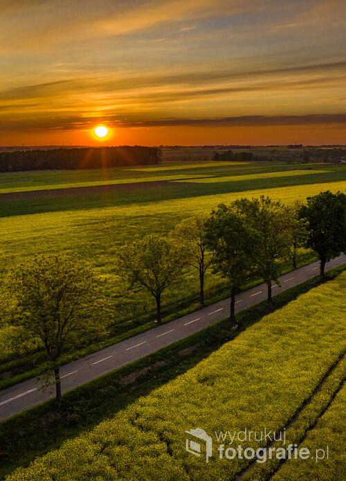 Zachód słońca uchwycony nad kwitnącymi polami rzepaku