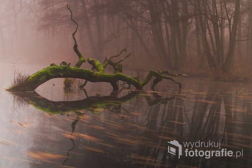 Wydaje się, że aby znaleźć ciekawe miejsce należy pojechać daleko. Czasami nie zauważa się piękna w okolicy.  To zdjęcie zrobiłem podczas bardzo mglistego dnia w Poznaniu. Wykorzystałem zmienny filtr szary, Pentax K-S2 oraz Sigmę 17-50.