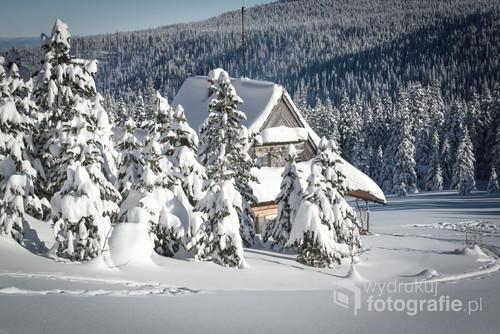 Zimowa Hala Gąsienicowa w zimie stulecia 2019r