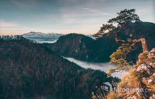 Widok na Tatry z Sokolicy w Pieninach