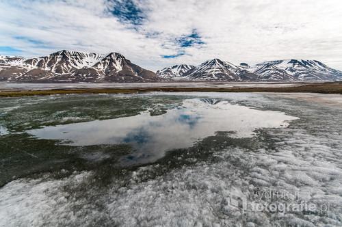 W czerwcu, kiedy średnia temperatura dobowa wzrasta powyżej zera, wierzchnia warstwa wiecznej zmarzliny na Spitsbergenie konsystencją zaczyna przypominać galaretę, a na lodzie pojawiają się liczne oczka wodne.