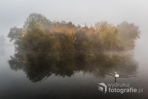 Fotografia przedstawia skąpaną we mgle wyspę w Leśnym Parku Kultury i Wypoczynku