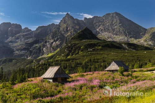 Fotografia przedstawia szczyty otaczające Dolinę Gąsienicową w Tatrach