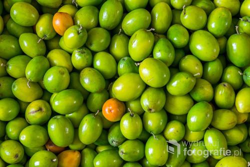Świerze, dojrzałe oliwki tak lubiane przez mieszkańców południa Europy. Cenione za cierpki smak i doskonałe oliwy.  Idealne zdjęcie do powieszenia w kuchni